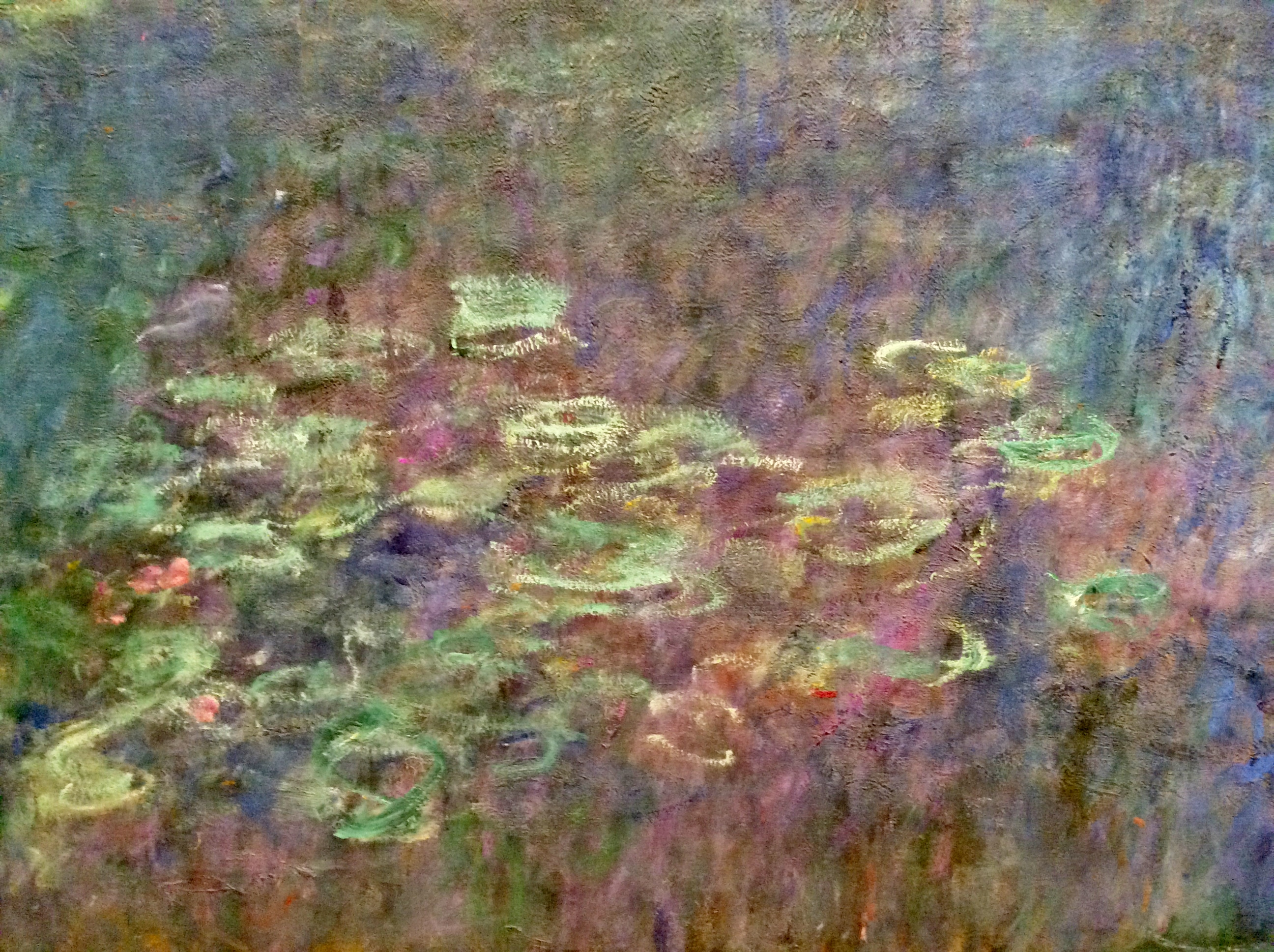 Water Lilies de Claude Monet